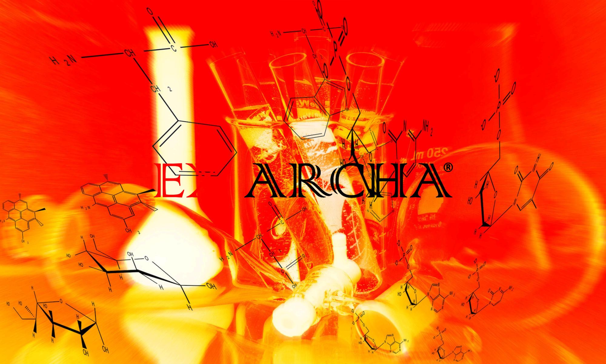 Ex Archa